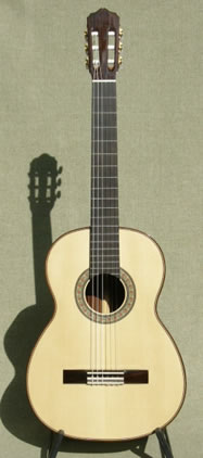 Arias Guitar 1A