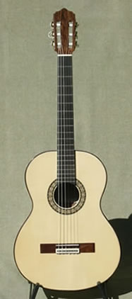 Arias Guitar 2A